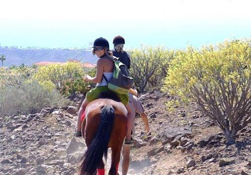 * * * Discover Gran Canaria's Nature in a different way! * * *  Would you like to see some real natural parts of Gran Canaria, where no car can bring you? Go for one of the many Camel Safaris or Horseback Rides ...Read More: http://tinyurl.com/RidesGC    Whats on in Gran Canaria - Google+