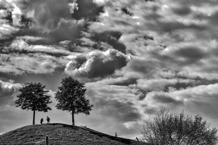 https://flic.kr/p/TWAsTp | The Black Tree | Playlist Song : The Black Tree - Stu Larsen www.youtube.com/watch?v=epExC8eUl7U Done at Günther Klotz Anlage, Karlsruhe, Germany on Good Friday