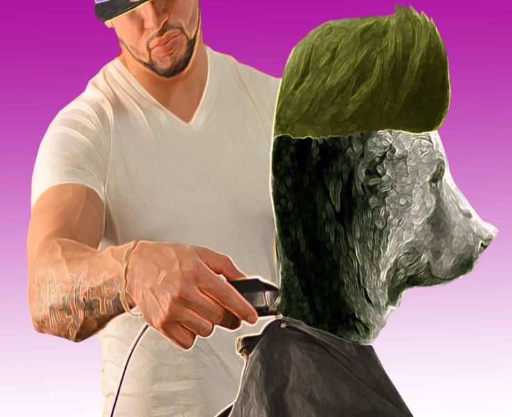 Hair style #collage #funnypic #funnyart