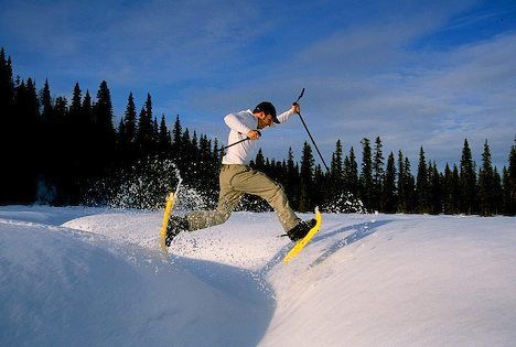 Snowshoeing – Fun Fitness for Fifties Plus: Fit Fun, Shoes Fit, Winter Fun, Winter Wonderlandsnowsho, Winter Wonderland Snowshoe, Snow Shoes, Fashion Fun, Winter Sports, Fun Fit