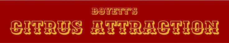 Boyetts Grove Citrus and Attraction