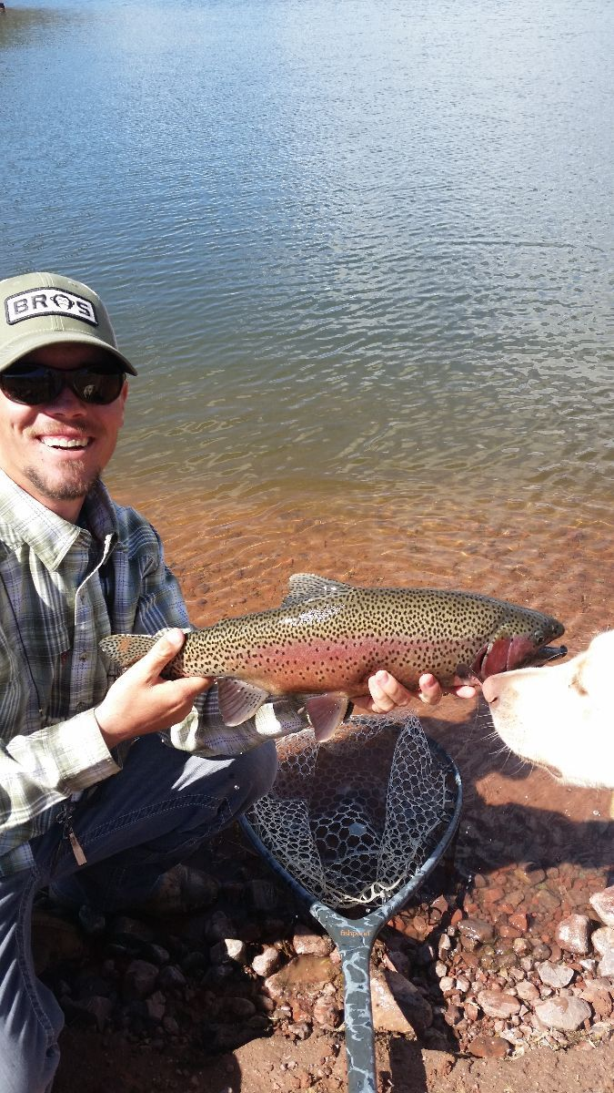 23 best adventures with kids images on pinterest arches for Utah fishing report