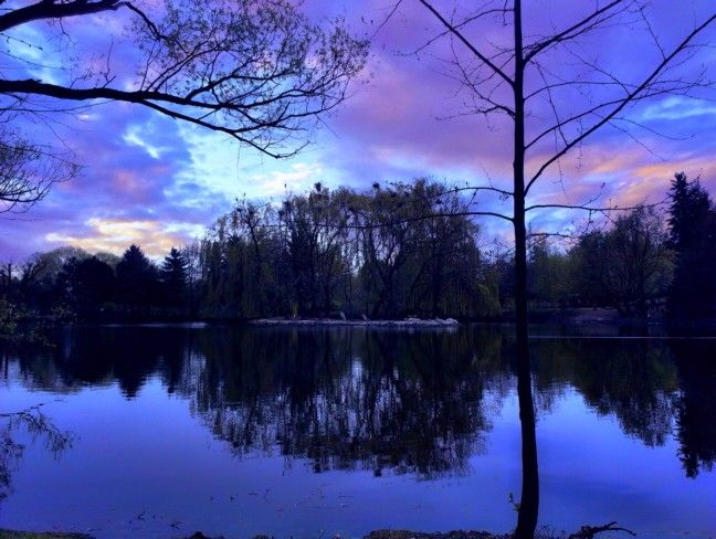 ZOO park Chomutov