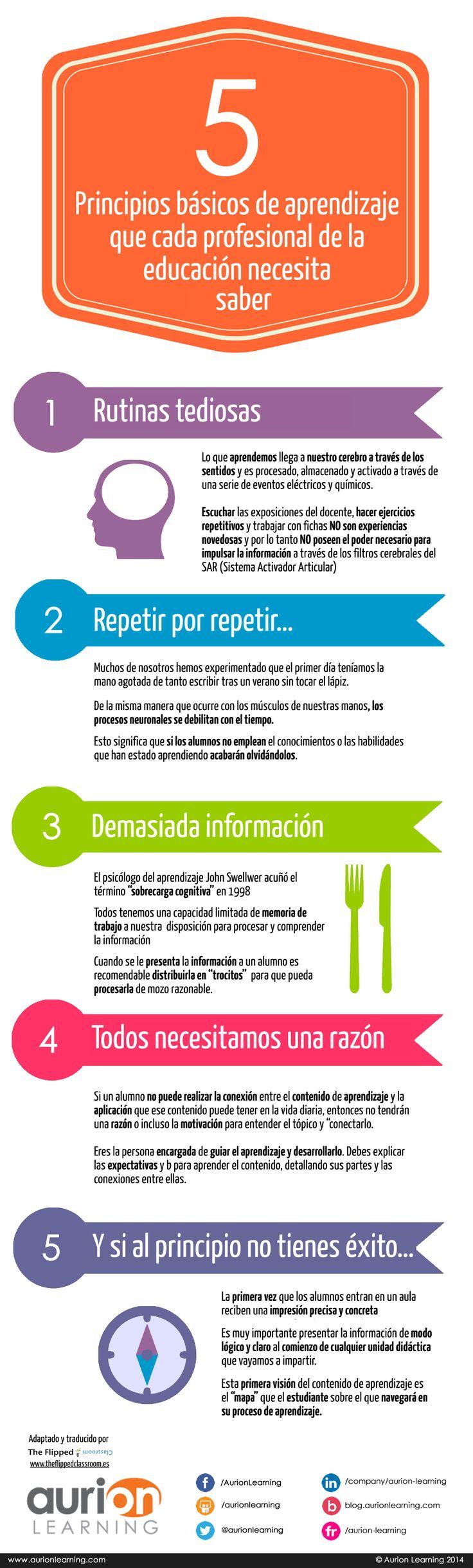5 principios básicos de aprendizaje que cada profesional de la #educación necesita conocer. #infografía