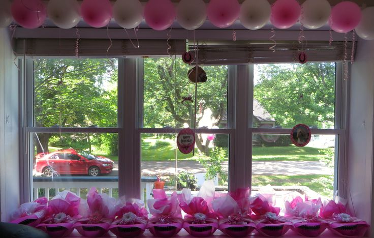 Horse Loot Bags or Balloon Window Trim Decoration