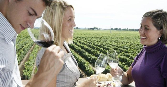 Niagara Wine Vacation.  Wine lovers will enjoy the bouquet