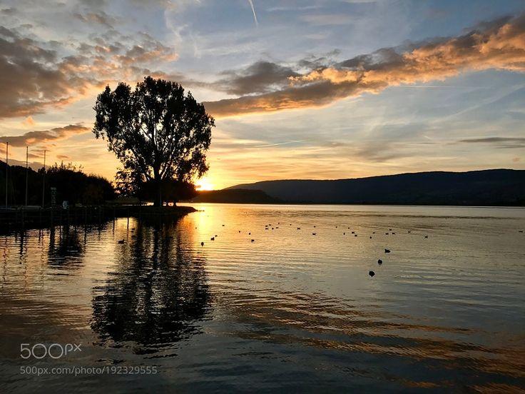 http://500px.com/photo/192329555 Genfer See / Schweiz by leitnerkonrad -. Tags: skylandscapelakesunsetswitzerlandwaterreflectionnaturebeachsunsummereveningdawncloudseeduskschweizgenfgenfersee
