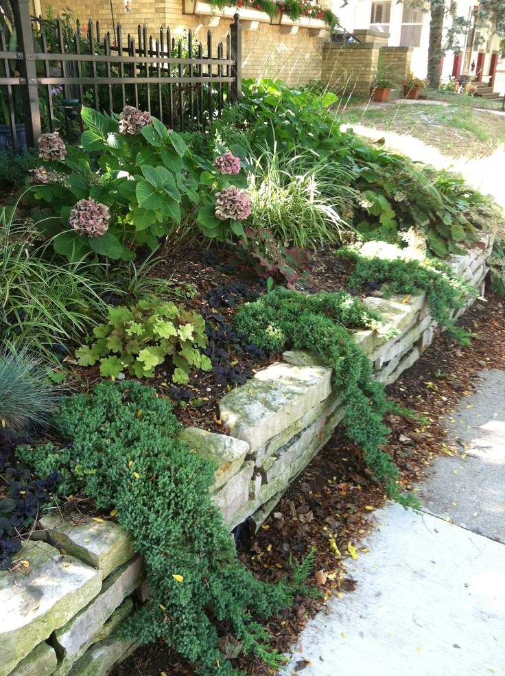 12 Best Retaining Wall Cover Ideas Images On Pinterest
