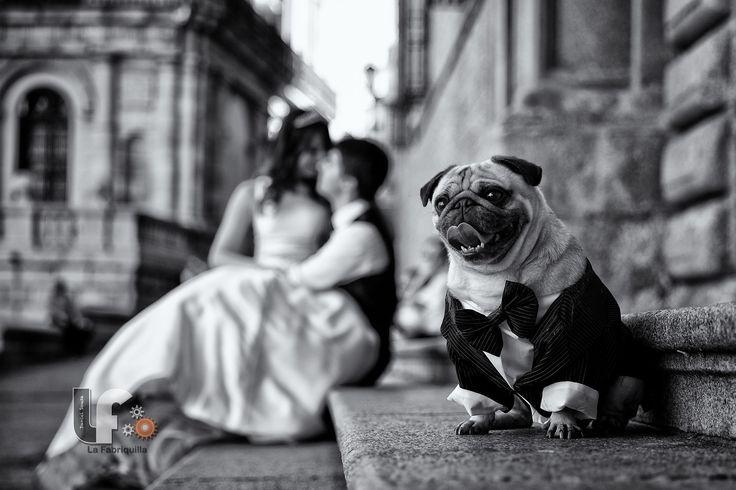 Post Wedding photo session in Toledo, Spain
