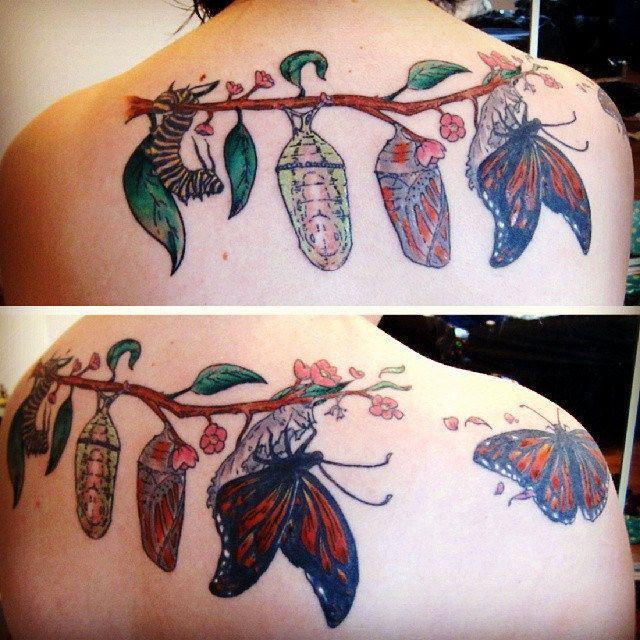 Tattoo Quotes Butterfly: 25+ Best Ideas About Caterpillar Tattoo On Pinterest