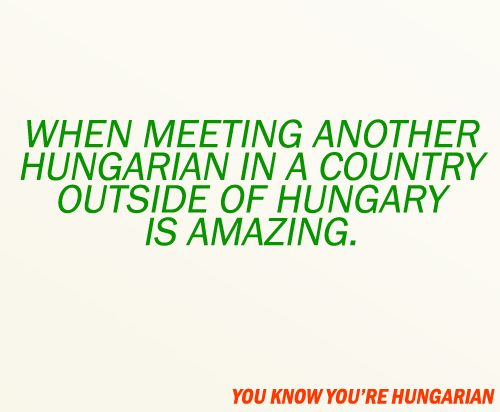 you know you're hungarian when - Google Search