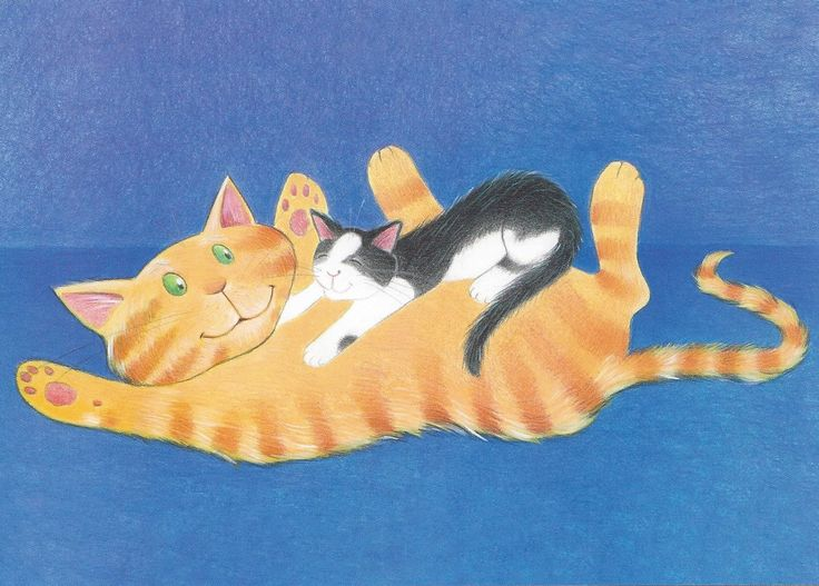 A postcard that shows the playfulness of Nat the Cat Can Sleep Like That by Victoria Allenby and Tara Anderson.