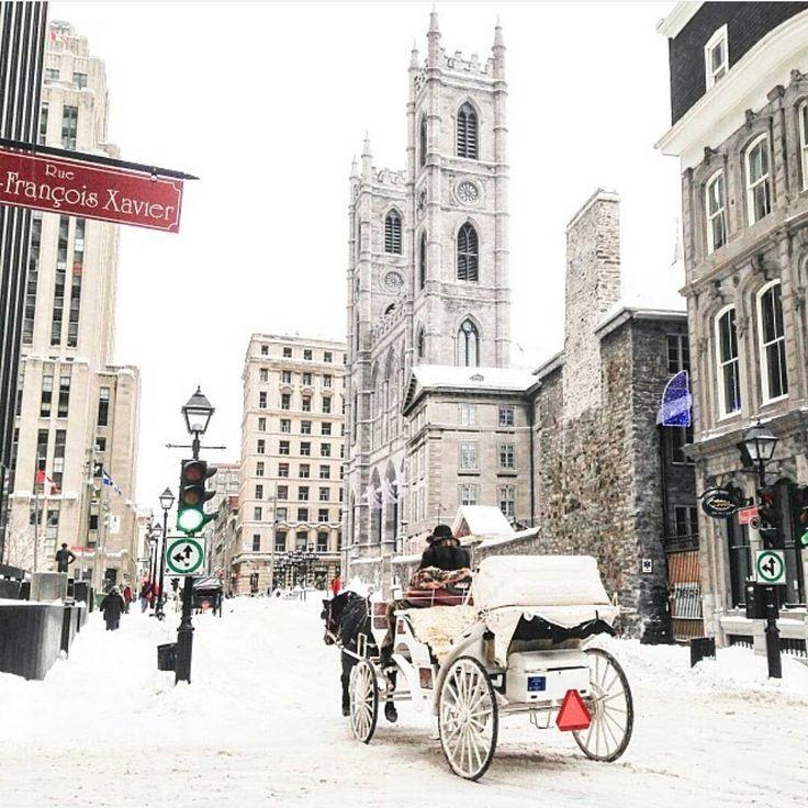 A snowy day in Old Montreal. ❄ Picture by @laetitiaorsini. #mtlblog #mtlblognews #montreal #montréal #mtl #quebec #québec #qc #canada #mtlmoments #downtownmontreal #oldmontreal #oldportmtl #winter #winter2017 #snow #vancouver #britishcolumbia #toronto #ottawa #ontario #calgary #edmonton #halifax #novascotia