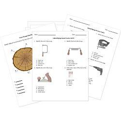 116 best Free Printable Worksheets images on Pinterest