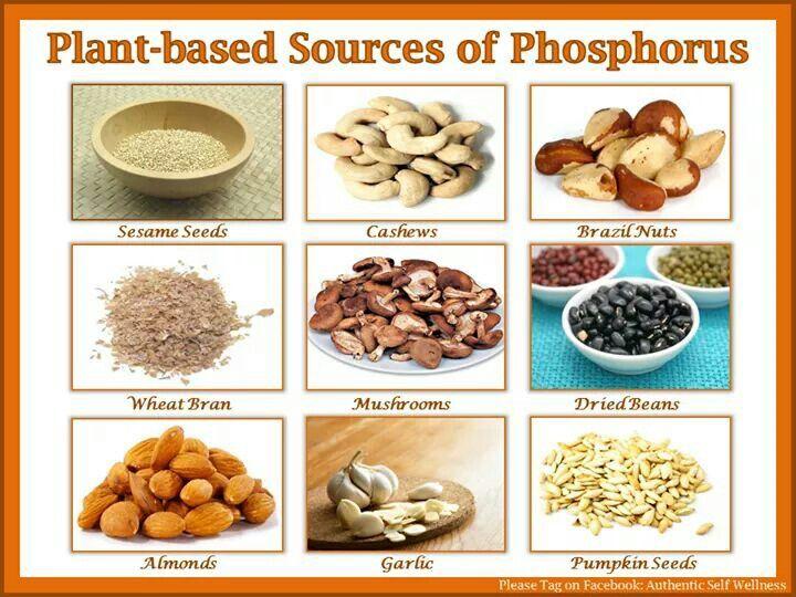 High Phos Foods
