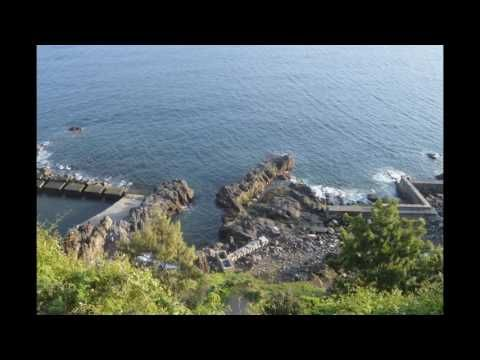 Apartment for Sale Madeira - Prime Properties Madeira Real Estate