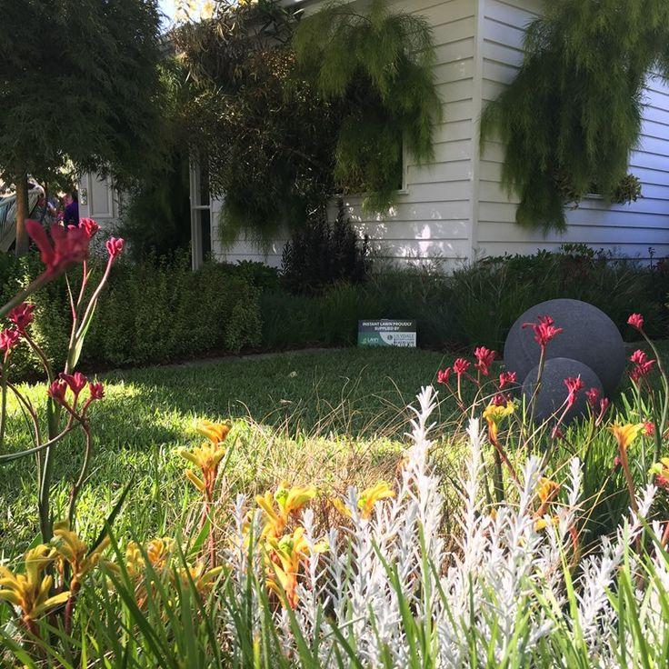 Melbourne International Flower U0026 Garden Show | Lawn Expo | Lilydale Instant  Turf | Love Your