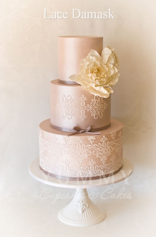 Cake Shop Paddington Nsw