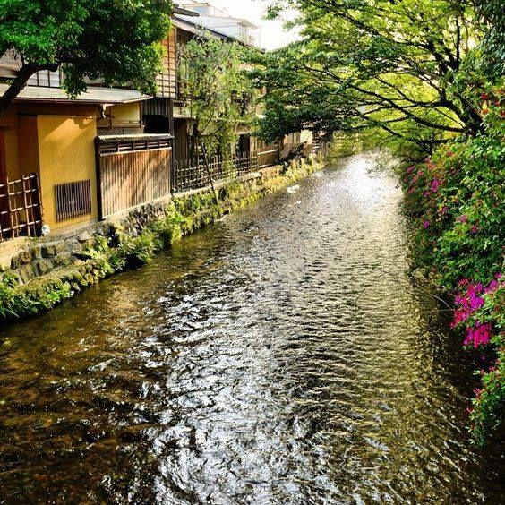 La #photo du jour : Shirakawa river Gion Kyoto. KaoruHonda Plus de photos sur Pint. : http://ow.ly/mWye302RfWp #Japan