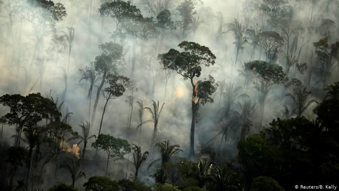Wildfires Climate Change And Deforestation Increase The Global