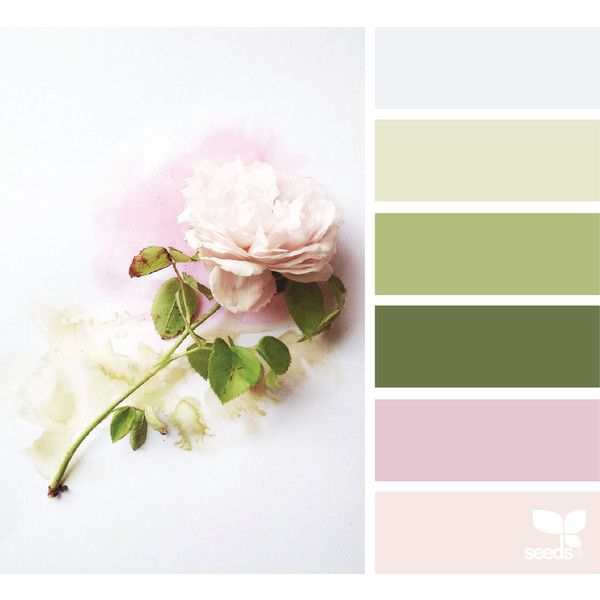 Spring ❤ liked on Polyvore featuring backgrounds, colors, effect and filler photos