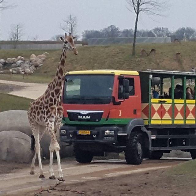 Prachtig park! #wildlands #natuur #kleinschalig #verpleeghuis #verpleging #dieren#genieten