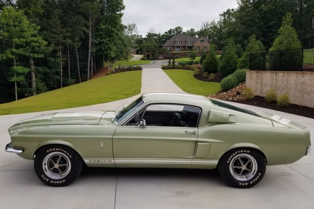 1967 Shelby Mustang Gt500 4 Speed Mustang Gt500 Shelby Mustang Gt500 Mustang Shelby