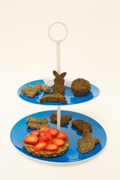 Gemeente Reusel - De Mierden : Konijnen high tea op Animal Event