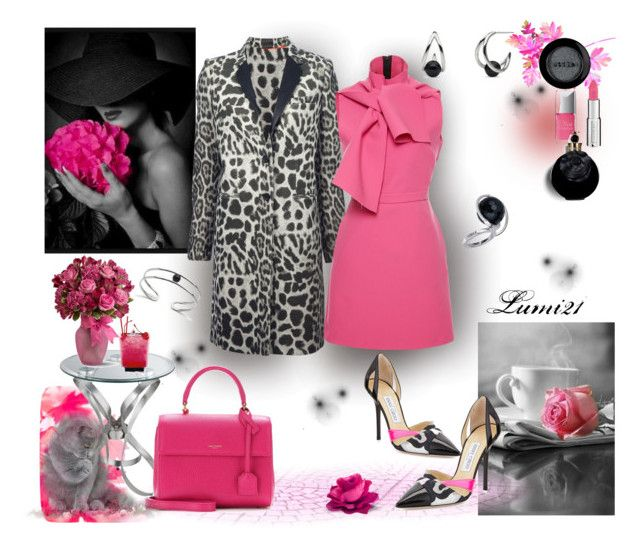 pink by lumi-21 on Polyvore featuring MSGM, Joseph, Jimmy Choo, Yves Saint Laurent, Nuovegioie, Givenchy, Stila, Valentino, Christian Dior and Edition
