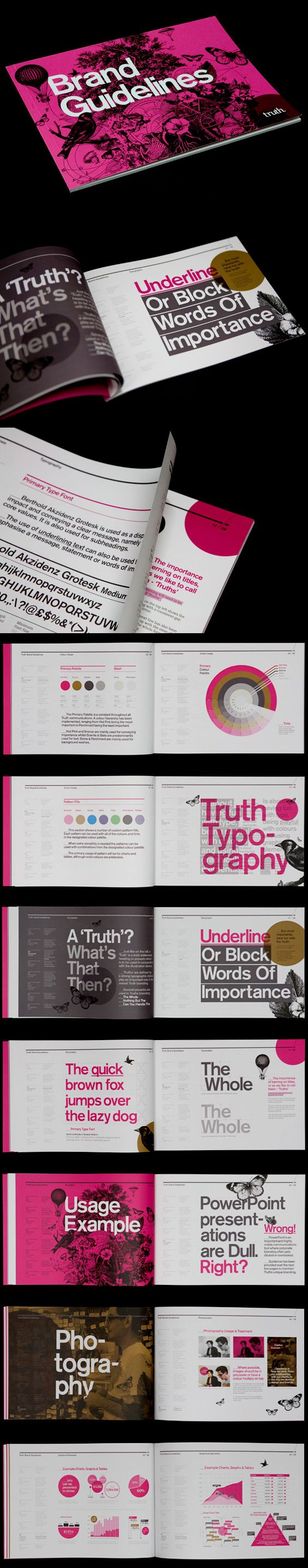 Truth Brand Guide by Mash Creative