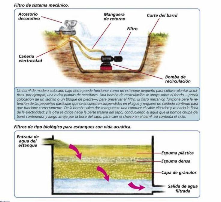 Mejores 100 im genes de mini estanques fuentes acuarios for Estanques y jardines acuaticos