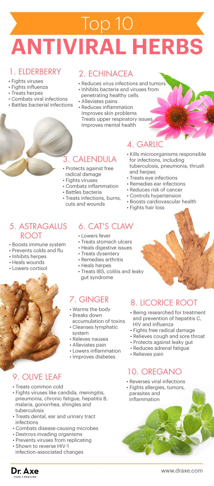 Top 10 antiviral herbs - Dr. Axe http://www.draxe.com #health #holistic #natural