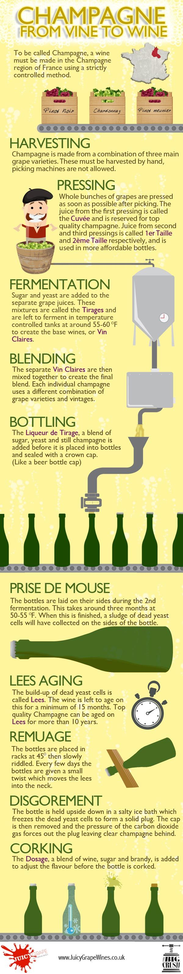 In order to be called Champagne, a wine must be made in the Champagne region of France using a strictly controlled method. Champagne Infographic.