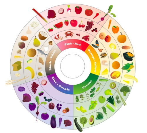 Food color wheel eat a rainbow pinterest color for Food wheel template