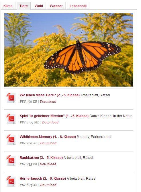 Mehr als 40 Lernspiele stellt der WWF Schweiz auf seiner Website zur Verfügung.