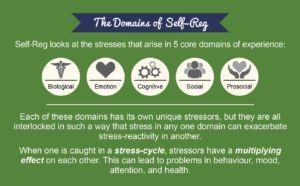 shanker-domains-fo-self-reg