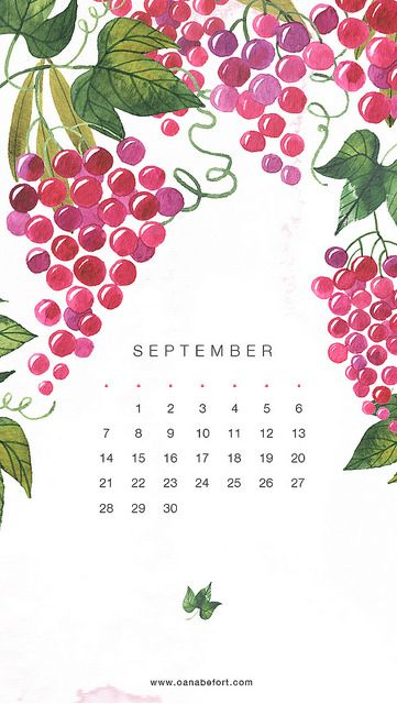 Illustrated Grapes September Calendar Iphone Wallpaper Background Phone Lock Screen