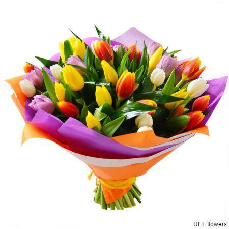 Bouquet «Amsterdam»