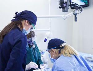 Lo #studio #dentistico Gobbato è costituito da uno staff specializzato nella cura delle varie patologie del cavo #orale.