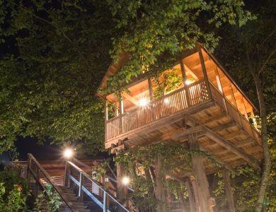 Tree House At Night - Garden Village Bled