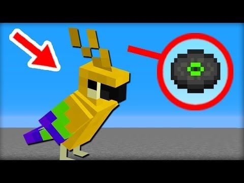 how to get a wolf to follow you in minecraft