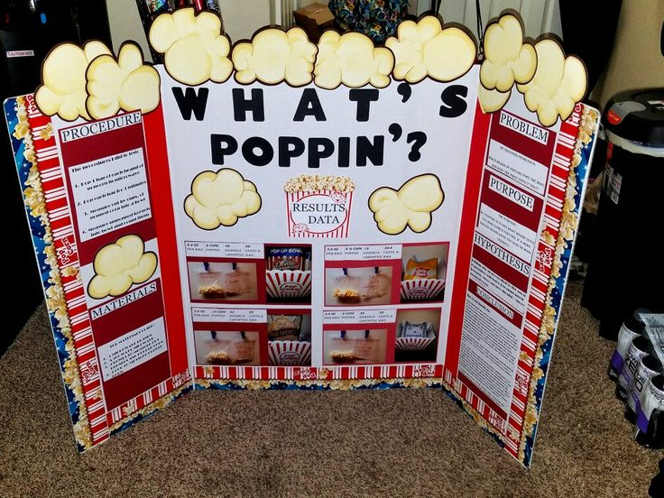 Our 4th grade science fair project
