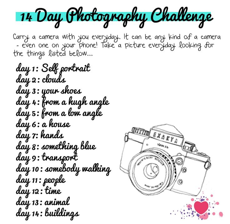 i heart teaching art: lesson idea: 14 Day Photography Challenge