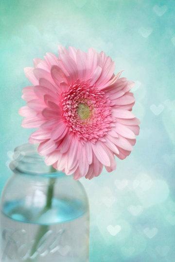 Pink Flower Photography, Pink Daisy Photography, Pink & Aqua Blue Nursery Wall Art, Pink Gerbera Daisy in a Jar, Gerber Daisies 8x10 Print. via Etsy.