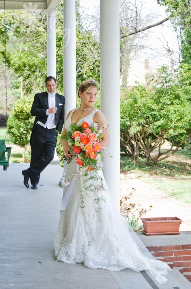 127 Best Eastern Panhandle Weddings West Virginia Images