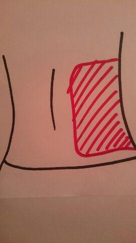 写真②肝臓位置 背中  蒸しタオルで肝臓を温める+脾臓を冷やす。  肝臓が疲れると脾臓にも負担がかかる。 脾臓はお腹の左上、肋骨のすぐ下。 肝臓は右脇腹から背中にかけてある大きな臓器。  肝臓をあたためるとデトックス効果あり!春先などの鼻水や体調不良にも!
