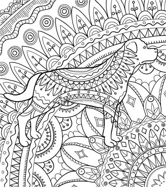 Adult Coloring Pages Colouring In Mandala Printable Books Sheets