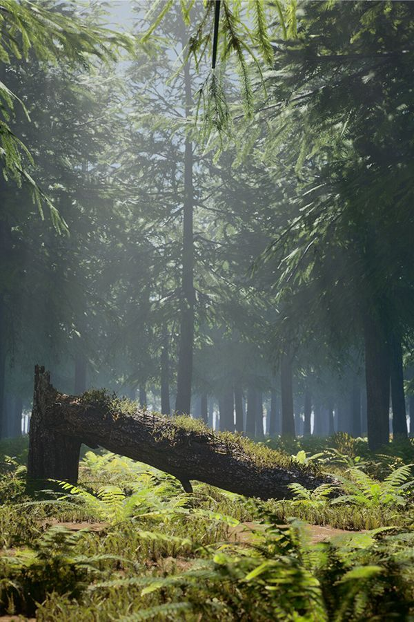 Pin By Speedtree On Cg In 2020 Unreal Engine Landscape Forest