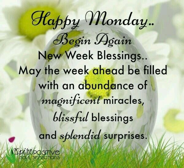 Good Morning Monday Quotes 407 Best Monday Blessings Images On Pinterest  Mondays Happy .