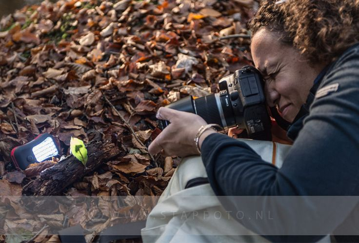 Workshop herfstfotografie